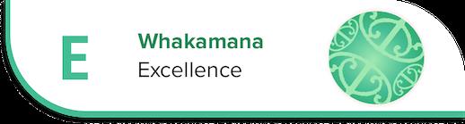 Excellence - Values - Bulls School